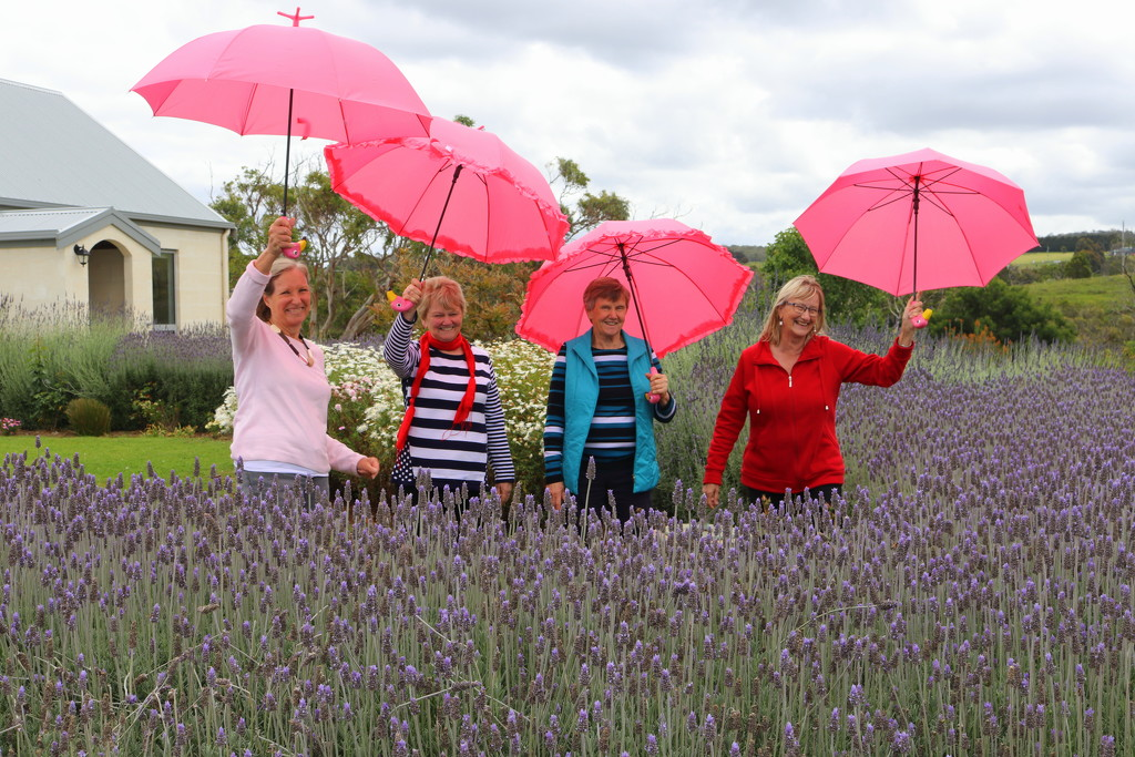 Ladies in Lavender by gilbertwood