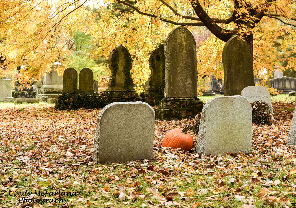 Pumpkin Amidst the Tombstones by cindymc