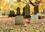 12th Nov 2018 - Pumpkin Amidst the Tombstones