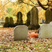 Pumpkin Amidst the Tombstones
