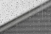 12th Nov 2018 - Rainy day