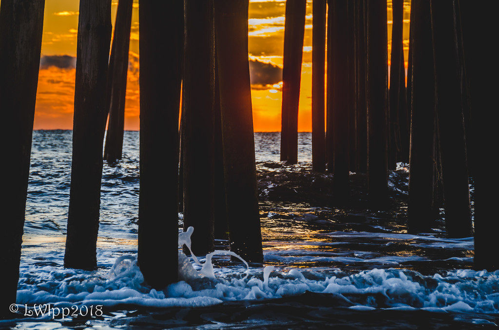 Sunrise Through The Piling  by lesip