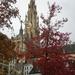 Autumn in Antwerp. Be. by pyrrhula