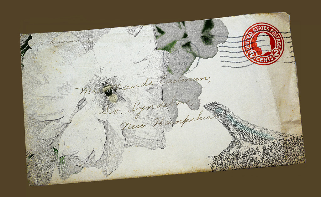 Mail Art by Weezilou