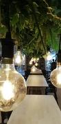 11th Nov 2018 - Light bulbs