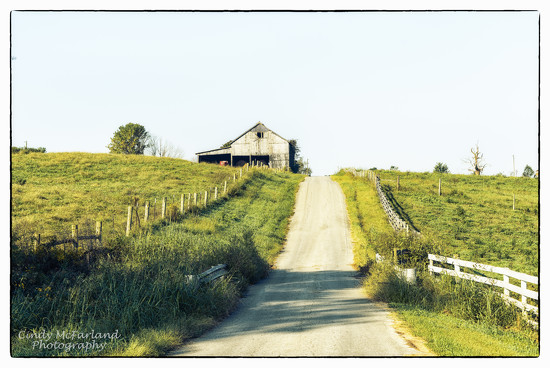Old country road by cindymc