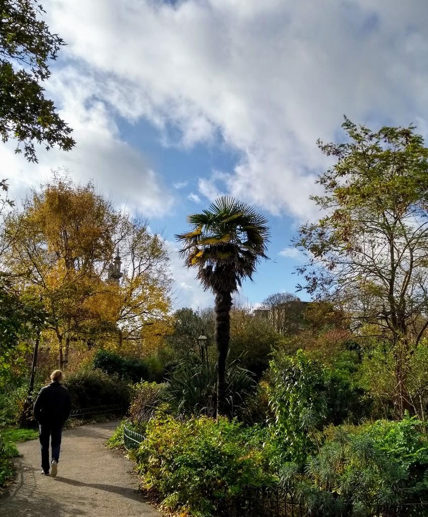 Pavilion Gardens by 4rky