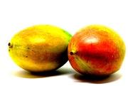 15th Nov 2018 - mangoes