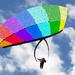 WWYD176a - flying high