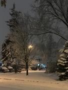 15th Nov 2018 - First snowfall