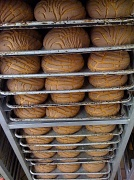 11th Feb 2010 - Pans of Pan Dulce