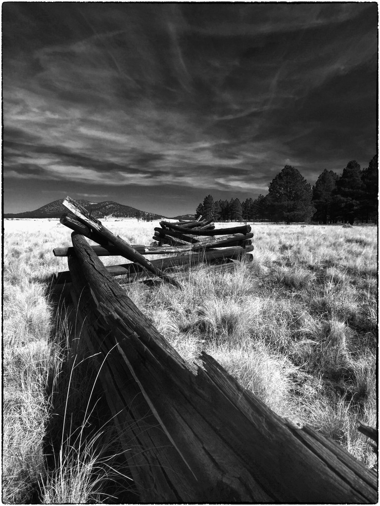 Split Rail Fence by joysabin