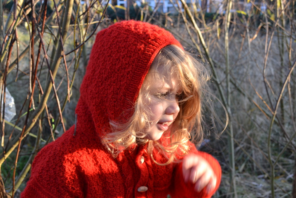 Our very  own  little Red Riding Hood  by brennieb