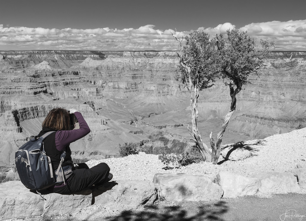 Photographer At Work by jgpittenger