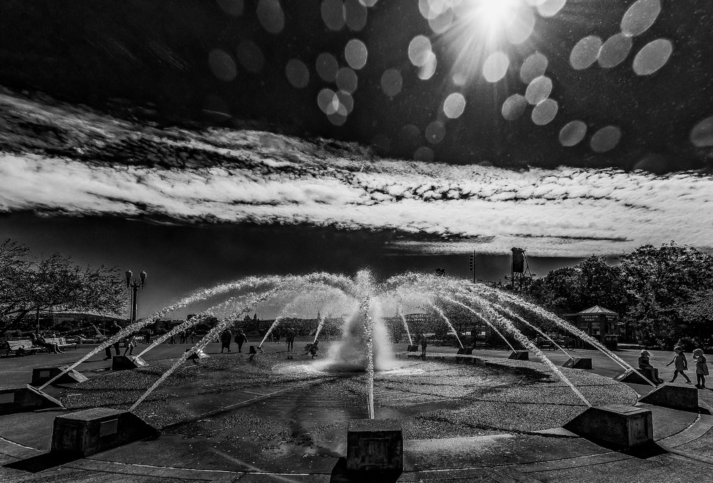 A Fountain in Portland by taffy