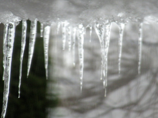Icicles by bruni