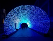 18th Nov 2018 - Tunnel of Light