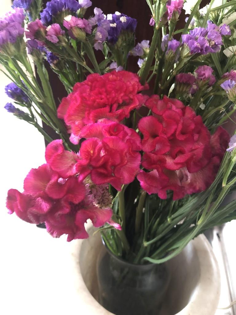 Beautiful flowers from Ooty  by veengupta