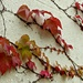 Last bit of colour clinging on by judithdeacon