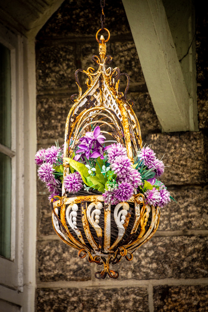 Hanging basket by swillinbillyflynn