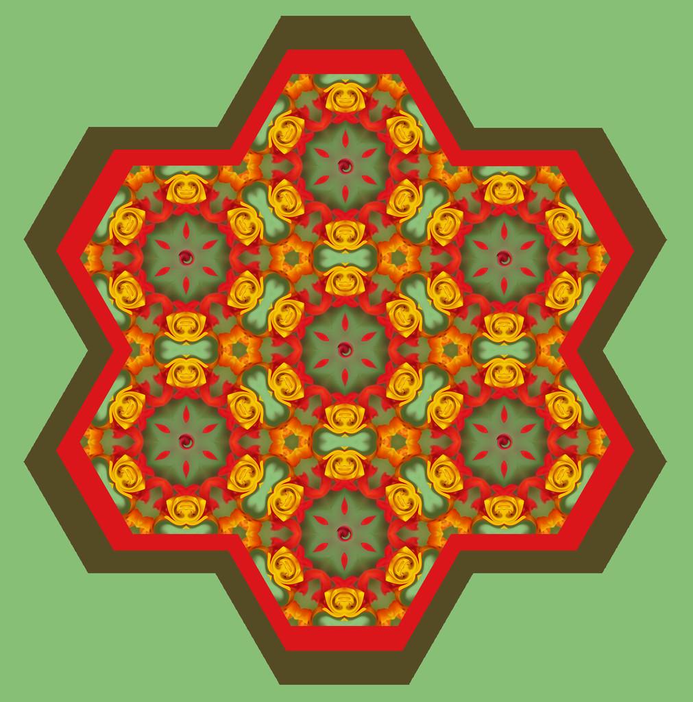 Milkweed kaleidoscope ETSOOI by koalagardens
