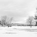 The beauty just after a snow day by joansmor