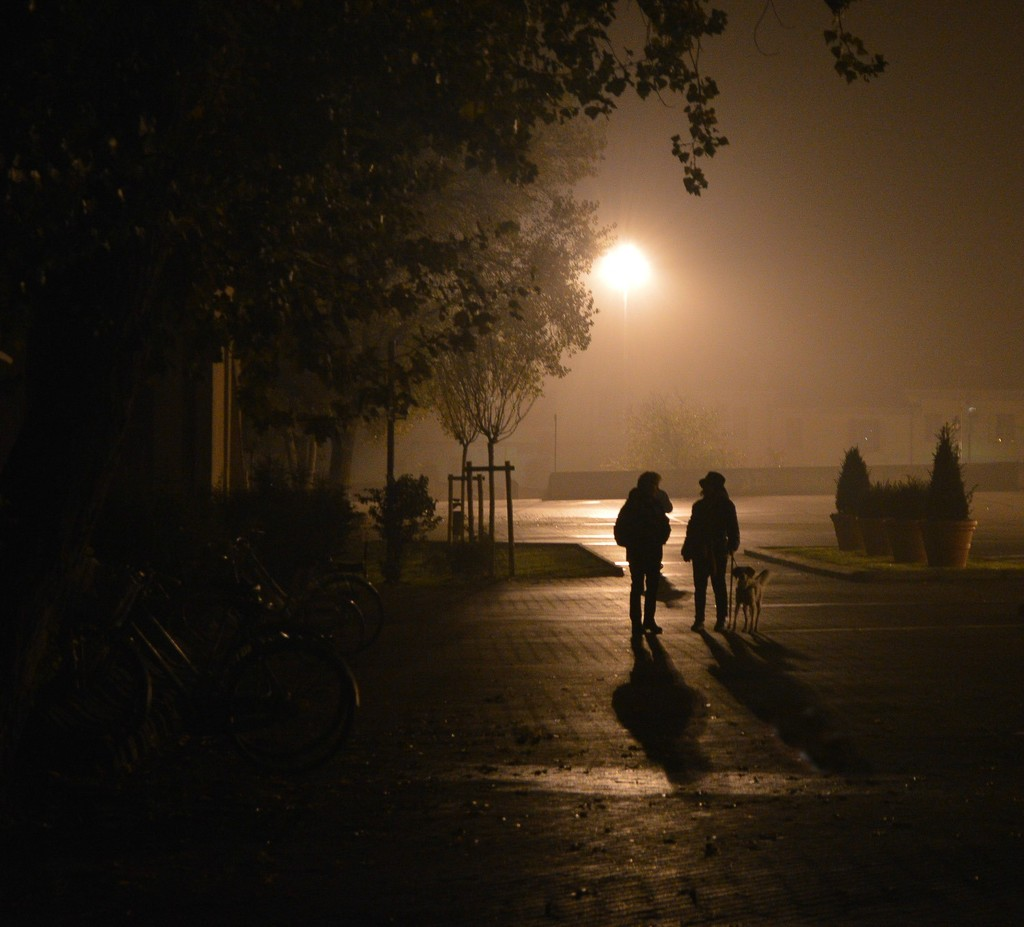 Silhouettes in the fog by caterina
