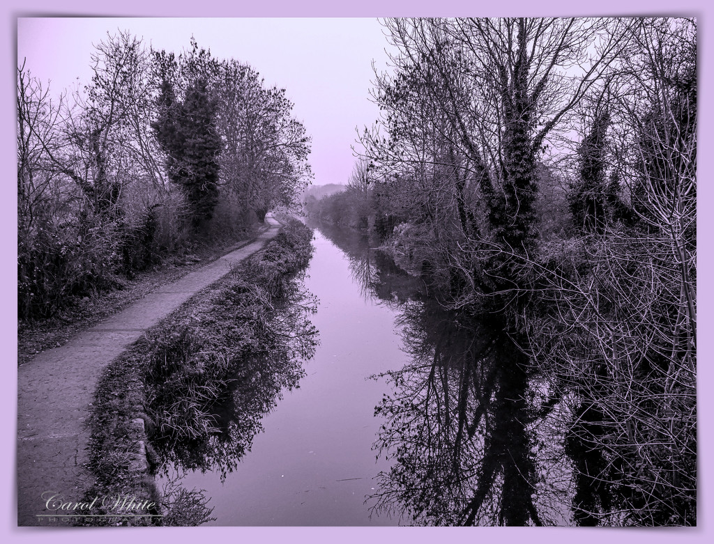 Chilly Morning On The Canal by carolmw