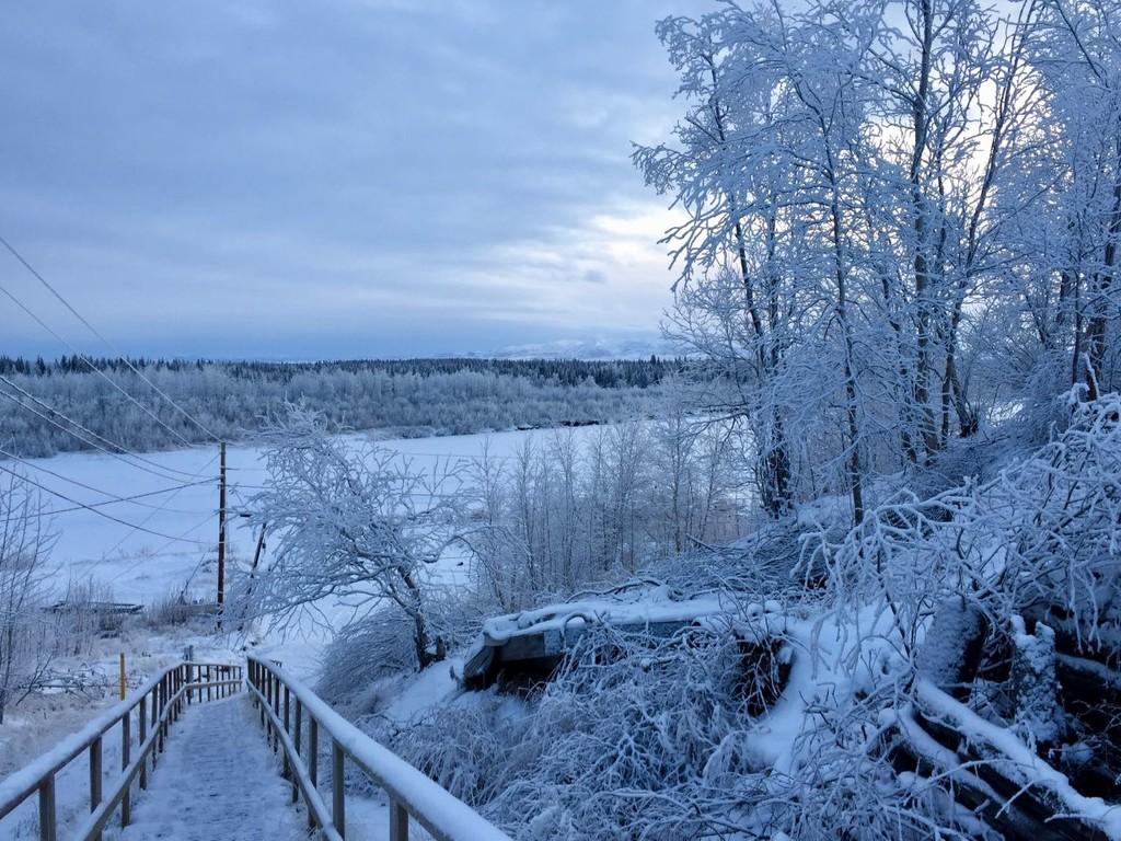 Frozen by jetr
