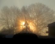 23rd Nov 2018 - Sunrising through the fog