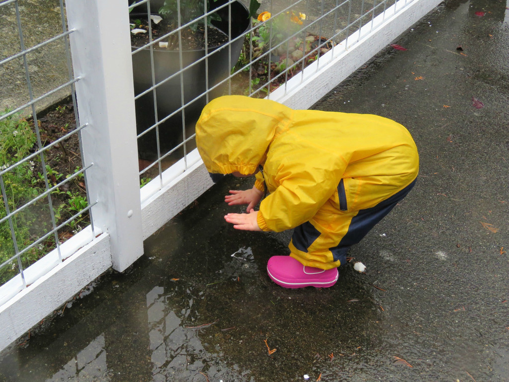 Puddle Play by seattlite