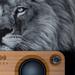 Lion & Speaker