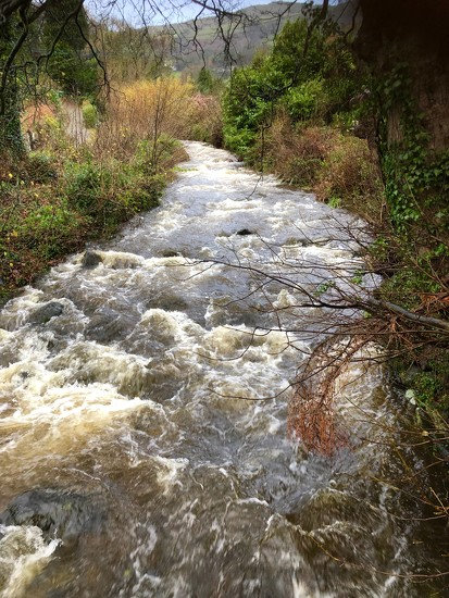 Afon Roe - From stream to torrent by dailydelight