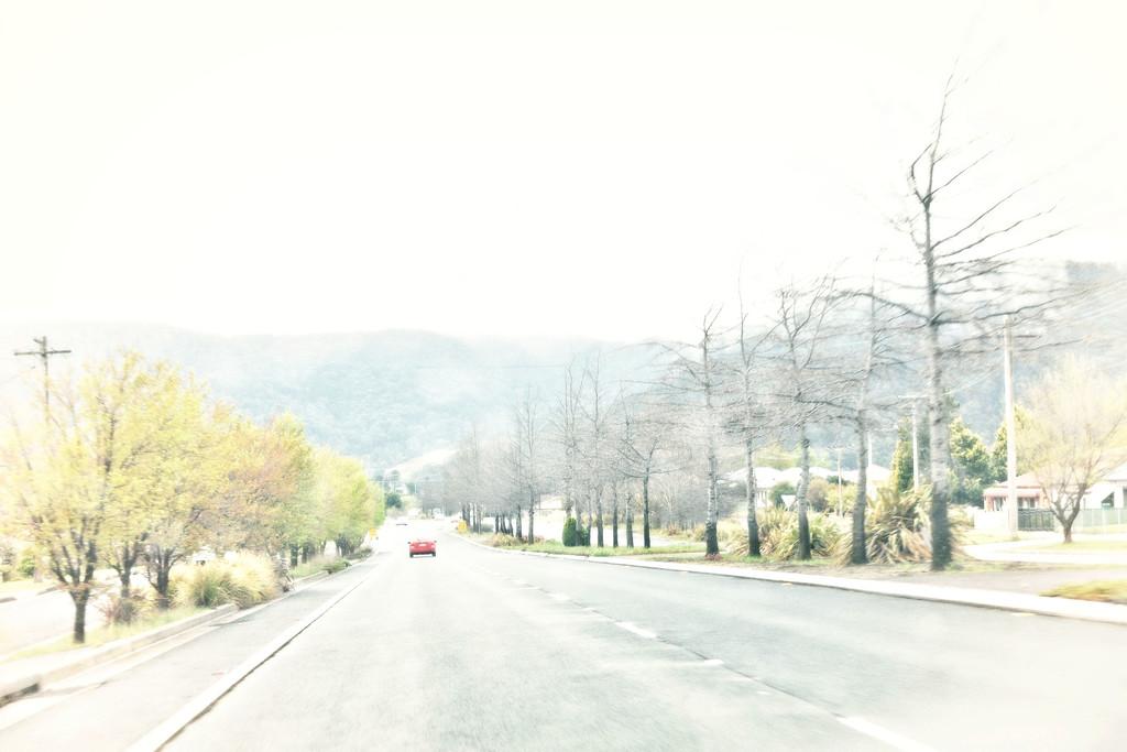 roadtrip-3 by annied