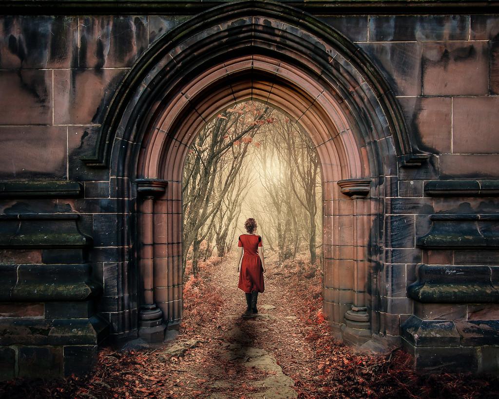 Forest Door by rosiekerr