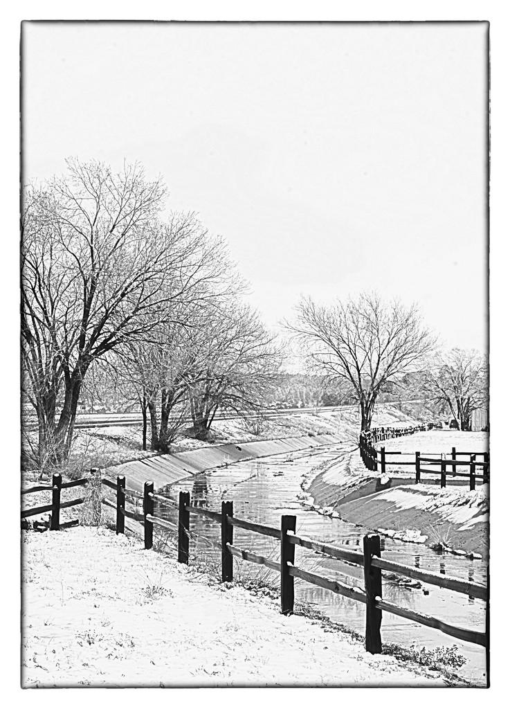 1st Snow  by joysabin