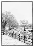 30th Nov 2018 - 1st Snow