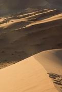 17th Nov 2018 - Desert landscape
