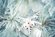 1st Dec 2018 - Welcome, December