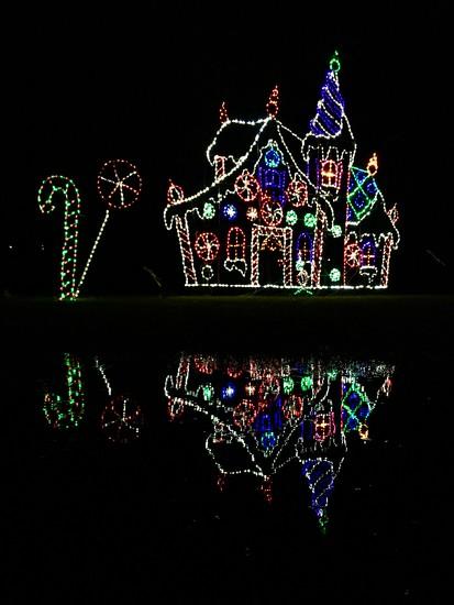 Holiday Lights by vera365