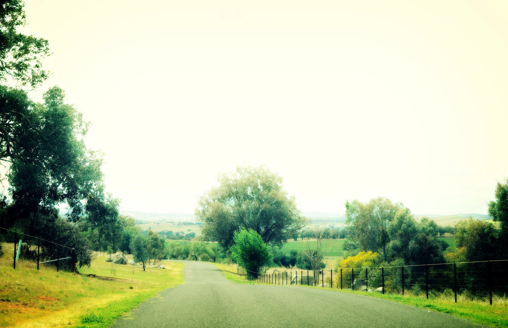 Cowra-1 by annied