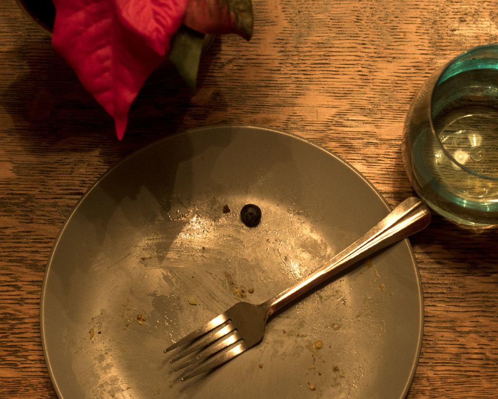 Blueberry on a Blue Plate with a Blue Cup by lynbonn