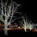 Festive Lights by kwind