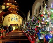 2nd Dec 2018 - Christmas Tree Festival