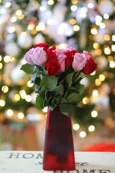 Birthday Roses by judyc57