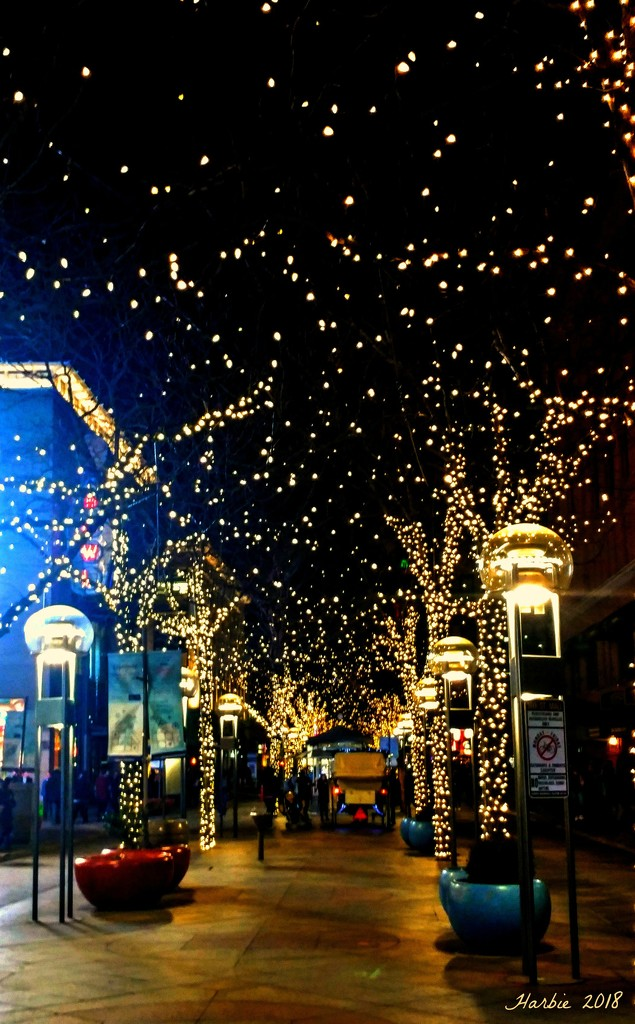 Holiday Lights by harbie