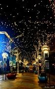 5th Dec 2018 - Holiday Lights