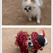 Doggy Steampunkers