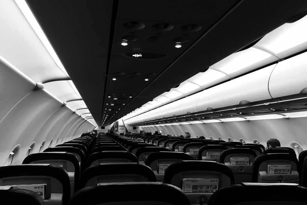 ... and in the plane (similar perspective) by vincent24