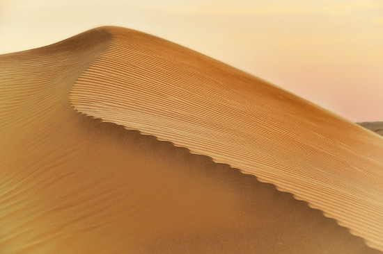 shaped by the breath of the desert by jerome